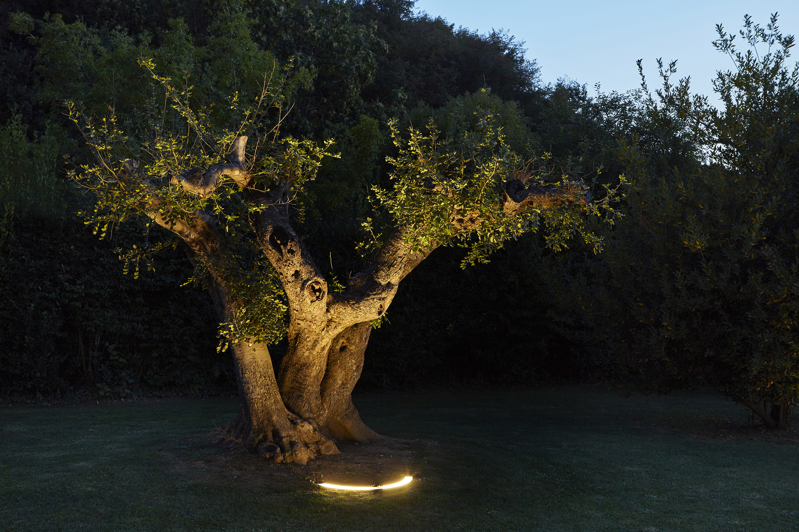 illuminare-albero-miniround