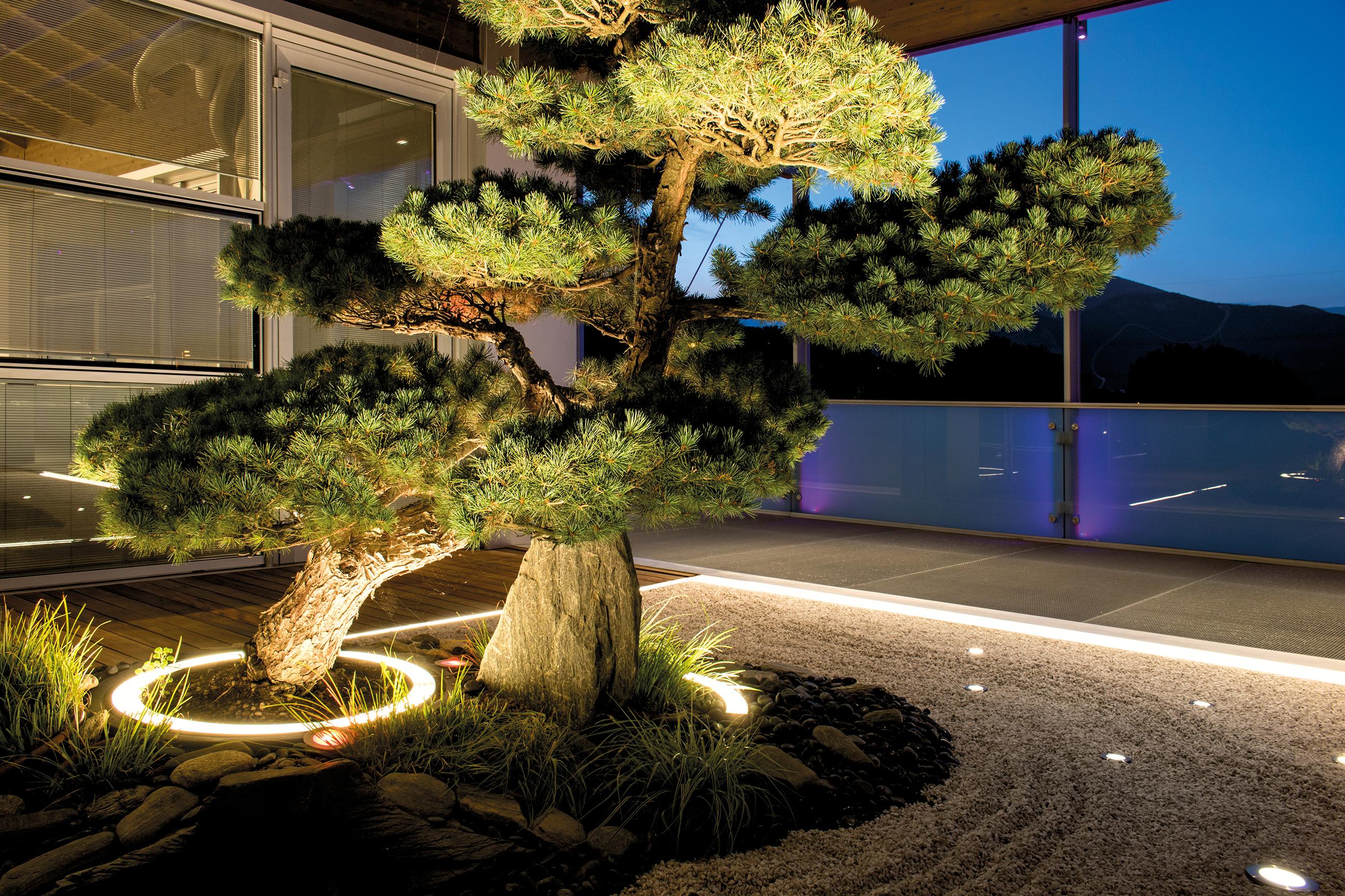 miniround-albero-illuminazione-uniforme