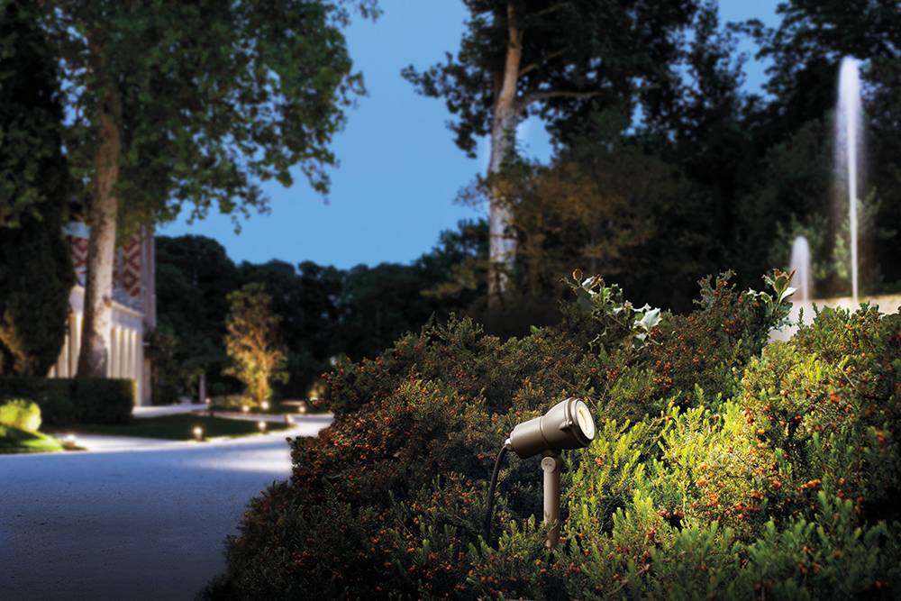 Nano focus to illuminate bushes