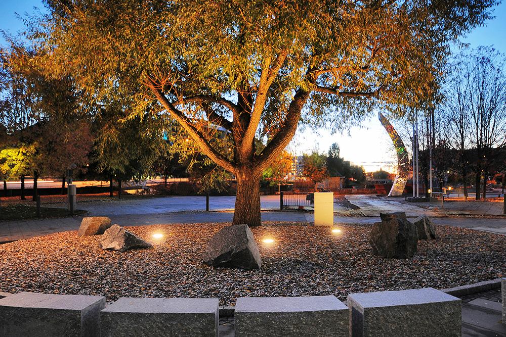Zip uplight to light up tree